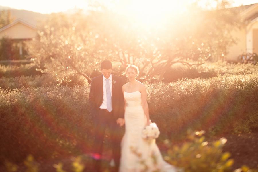 Solage_wedding_calistoga (4).jpg