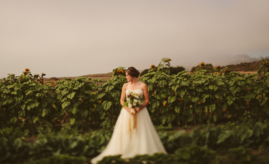 Coastal-Farm-wedding-010