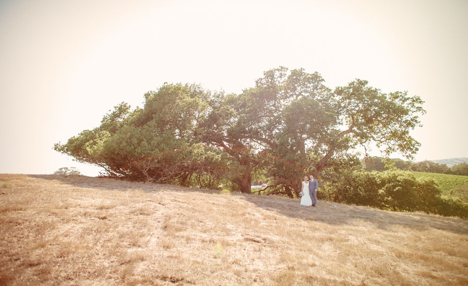 Sonoma-wedding-photographer-15